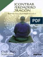118381426 Encontrar El Verdadero Dragon