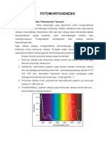 96257295-Paper-Fistum-Fotomorfogenesis.doc