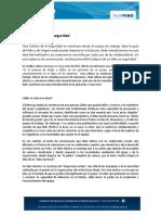 20072017_031536_09. TecniFISO - Generar Líderes en Seguridad.pdf