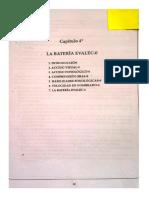 350789461-Manual-Evalec-0.pdf