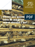 There-Are-Queen-Cells-In-My-Hive-WBKA-WAG.pdf