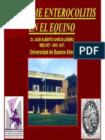 diarrea_en_el_equino.pdf