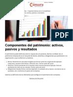 Componentes Del Patrimonio_ Activos, Pasivos y Resultados