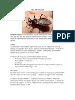 Mal de Chagas, Importancia de Vacunas y Chequeo Medico