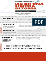 INFOGRAFIA AUDITORIA FINANCIERA