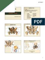 20171025_0216_Aula-8-Quadril-Pelve.pdf