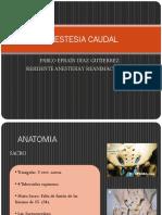 ANESTESIA CAUDAL.pptx