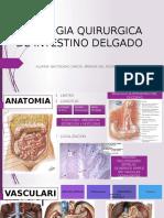 Patologia Qx de Intestino Delgado