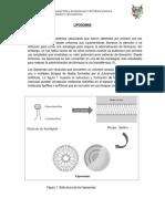 LIPOSOMAS DERMOFARMACIA.docx