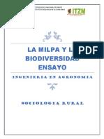 La Milpa y La Biodiversidad Ensayo