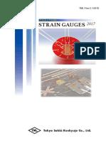 StrainGauges_E1007D