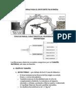 TIPOS DE FIBRAS PARA SHOTCRETE.docx