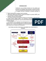 2.-Metabolismo Ruminal
