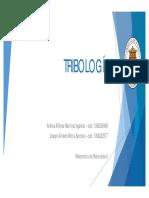 TRIBOLOGÍA.pdf