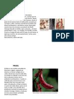 Cocina mexicana, fichero que incluya características generales de los ingredientes prehispánicos