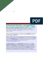 Estructura función y propiedad de los cromosomas genes ADN y ARN.docx