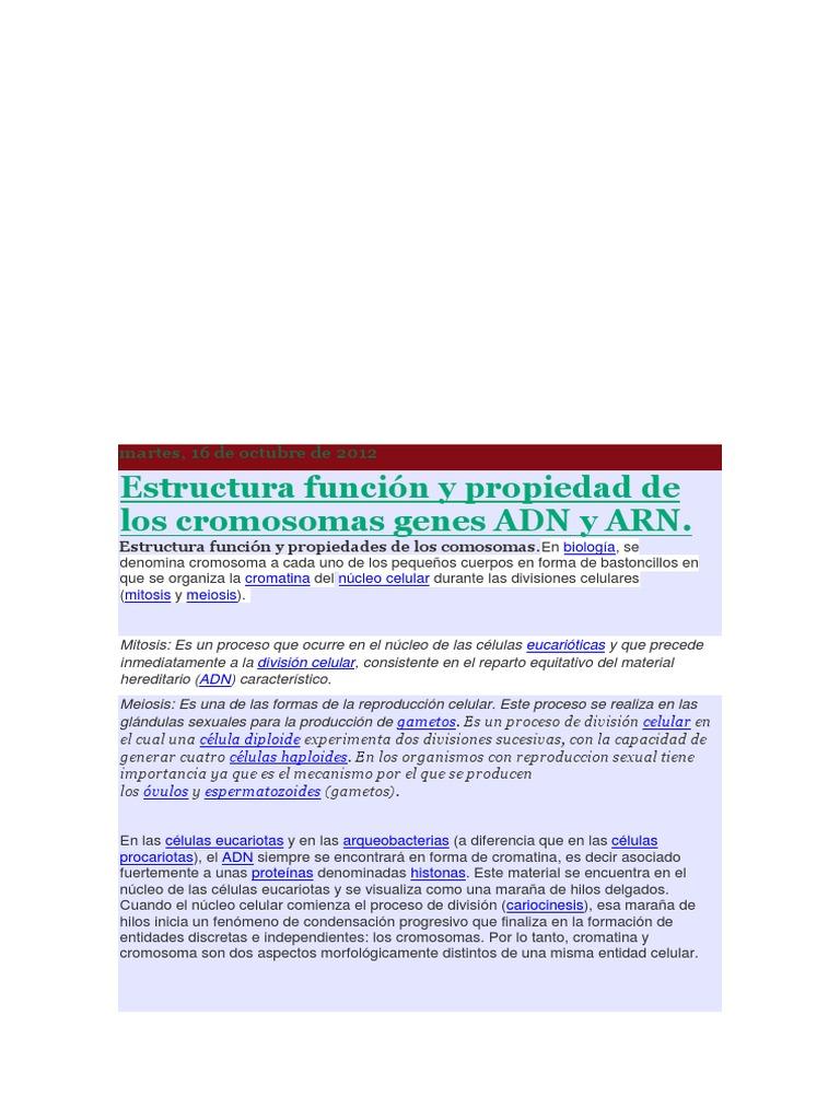 Estructura Función Y Propiedad De Los Cromosomas Genes Adn Y