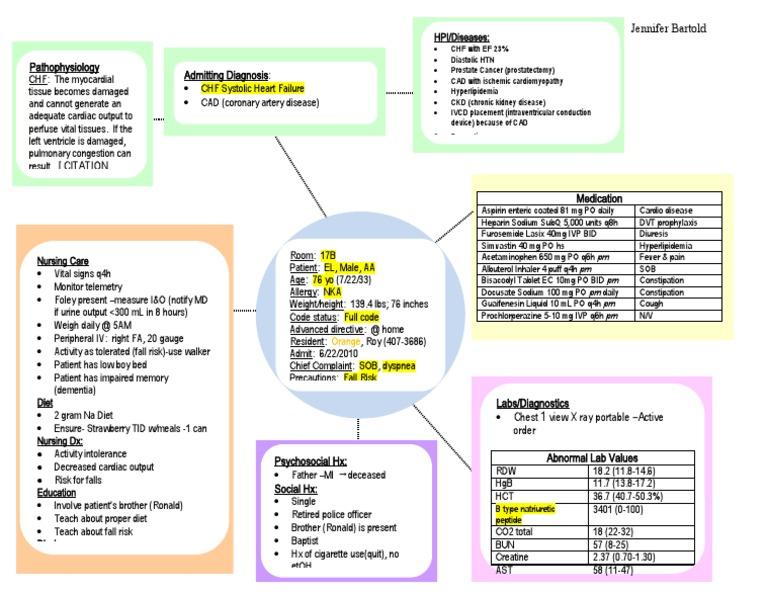 Concept Map Template Nursing Concept Maps T