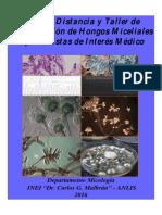 Guía-Miceliales-Oportunistas-2016-DIFUSIÓN.pdf