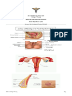 Female Reproductive System.doc