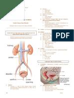 Genito-Urinary System.pdf