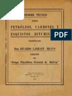 Informe de Petróleos Carbones y Esquistos Bituminosos Bolivia