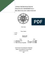 96569048-p2-Farkol-Print.doc