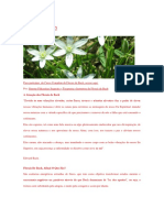 FLORAIS DE BACH.docx