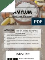 Amylum
