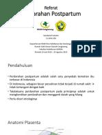 Referat PPH.pptx