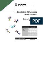 T._pratico_1_aminoacidos_1
