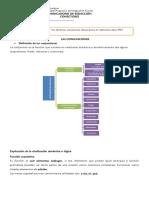 GUIA DE CONECTORES.docx