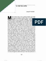 Hurtado, Joaquín - la vida boca arriba.pdf
