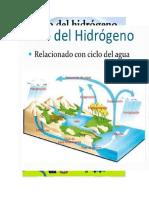 ciclo del carbon.doc