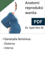 Anatomi Repro Kbk