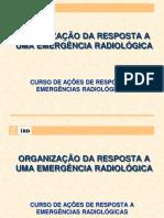 5 - Organização da Resposta - 2011.pdf