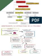 MORFOSINTAXI.docx