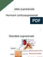 Hormoni-4.pdf