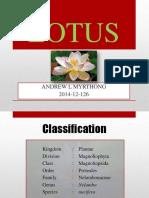lotusppt-150628154618-lva1-app6892