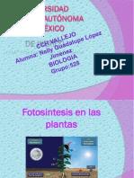 N.lopez Present.fotosin