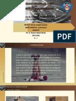 tesis-de-abandono-de-animales-1 (1).pptx