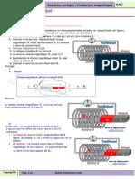 induction_magn.pdf