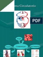 Sistema-Circulatorio y Linfático