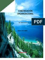 comunic. organiz.docx