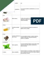 10 plantas medicinaless.docx