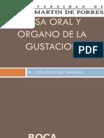 170270527 Fosa Oral y Organo de La Gustacion