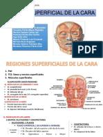 REGIÓN SUPERFICIAL DE LA CARA.pptx