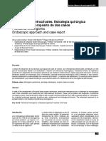 9 Meningiomas petroclivales.pdf