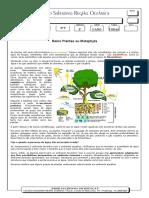 Apostila-Reino-Plantae-ou-Metaphyta.pdf