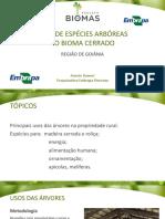 AULA 19_USOS ESPECIES ARBOREAS CERRADO GOIANIA.pdf